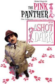 Komisař Clouseau na stopě