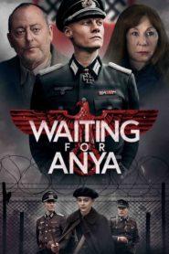 Čekání na Anyu