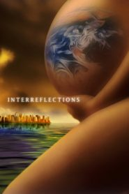 InterReflections