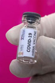 Vaccine COVID-19: Warning To Humanity